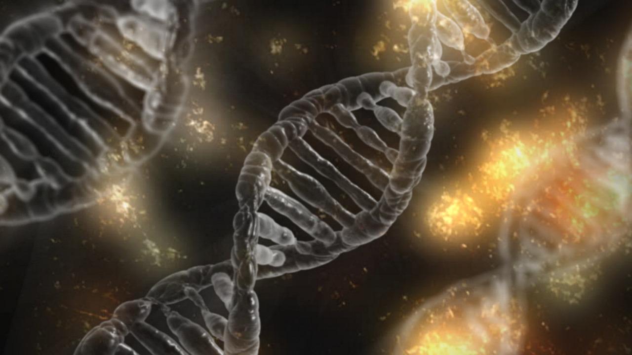 Mukopolisacharydoza łańcuch DNA