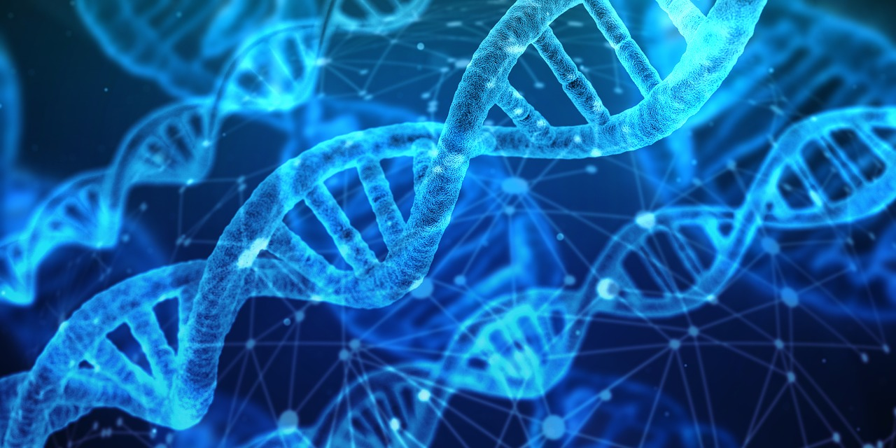 Zespół Blooma kod DNA