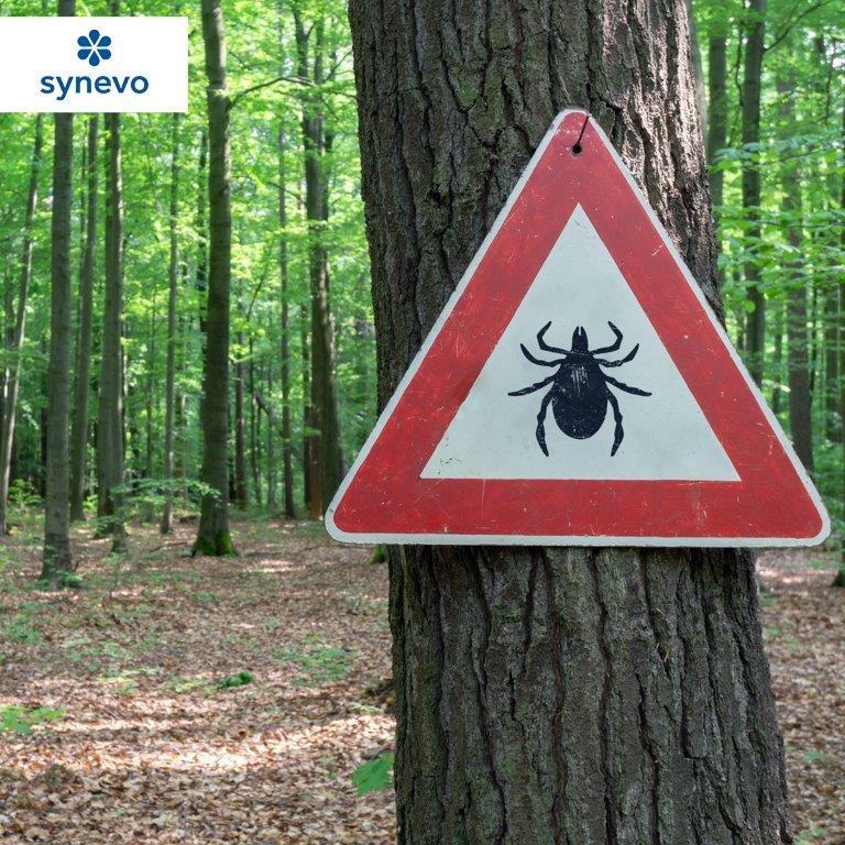 znak ostrzegawczy kleszcze na drzewie